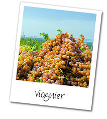 http://wineguide.virginwines.co.uk/